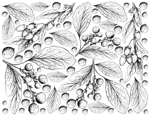 Disegnato a mano di bacche di goji e sfondo di frutti di arancia Vettore Premium
