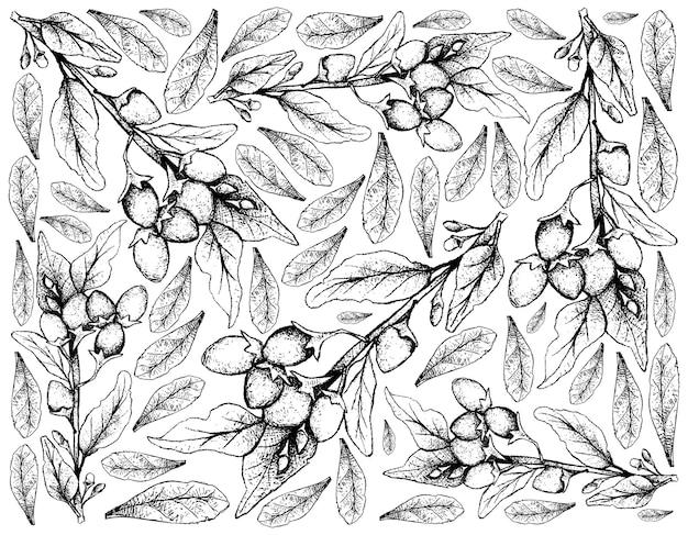 Disegnato a mano di bacche di goji su sfondo bianco Vettore Premium