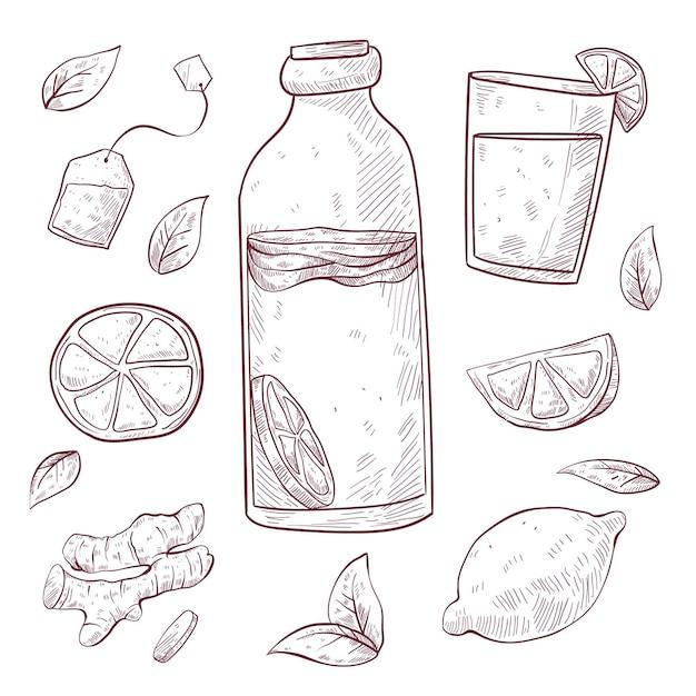 Tè kombucha disegnato a mano Vettore Premium