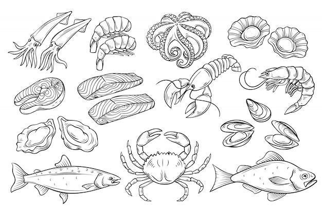 Set di frutti di mare disegnati a mano. Vettore Premium