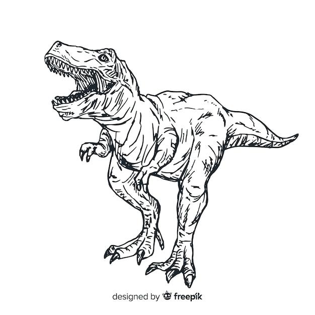 Sfondo T Rex Disegnato A Mano Vettore Premium