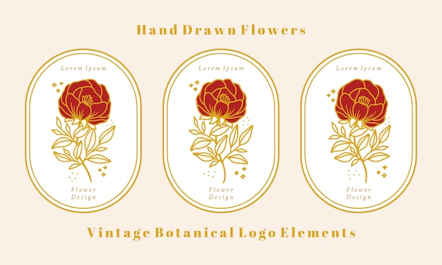 Collezione di elementi logo fiore di peonia botanica oro vintage disegnata a mano Vettore Premium
