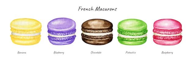 Set di torte di macaron francese mix acquerello disegnato a mano. cioccolato rosa giallo verde viola frutta pasticceria dessert isolato su sfondo bianco biscotti amaretti colorati, mirtillo lampone banana dolce Vettore Premium