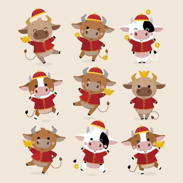 Cartolina d'auguri di felice anno nuovo cinese. zodiaco del bue. Vettore Premium
