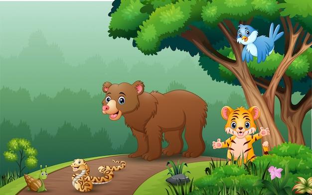 Animali selvatici felici che camminano sulla strada Vettore Premium