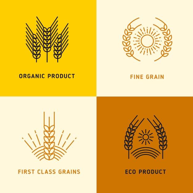 Raccolta di loghi vettoriali con chicchi di grano Vettore Premium