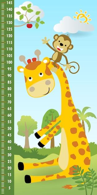 Parete di misurazione dell'altezza con scimmia arrampicata sul collo della giraffa per raccogliere un frutto Vettore Premium