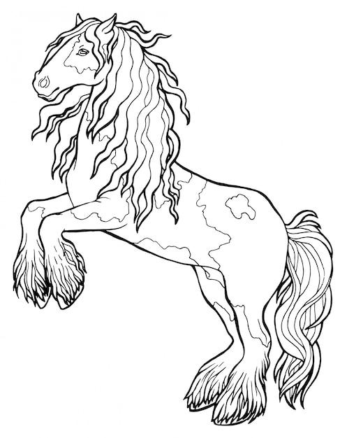 Disegni Da Colorare Di Un Cavallo.Il Cavallo Corre Al Trotto Libro Da Colorare Il Cavallo Corre Al Trotto Libro Da Colorare Tinker E Un Cavallo Di Razza Vettore Premium