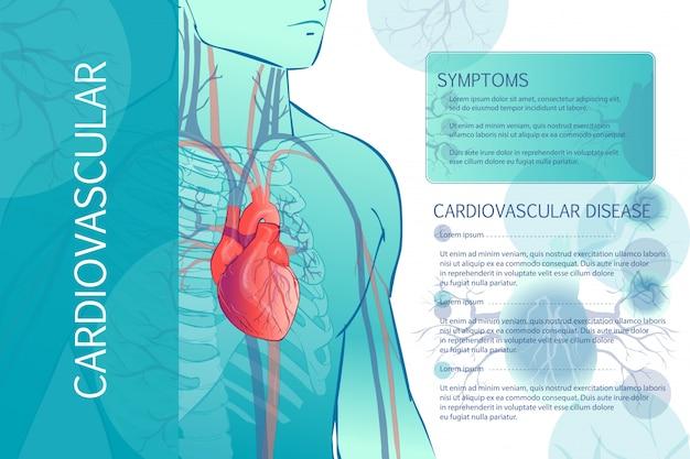 Sistema vascolare circolatorio umano Vettore Premium