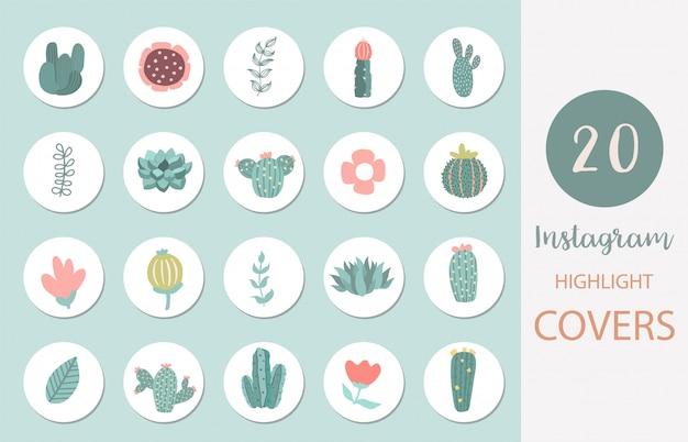 Icona della copertina in evidenza di instagram con lama, cactus, fiore per i social media Vettore Premium