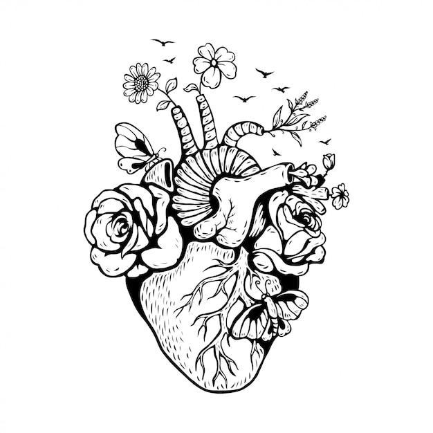 Illustrazione cuore anatomico con funghi Vettore Premium