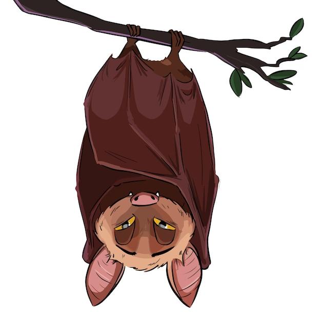 Illustrazione del pipistrello volante appeso a testa in giù Vettore Premium
