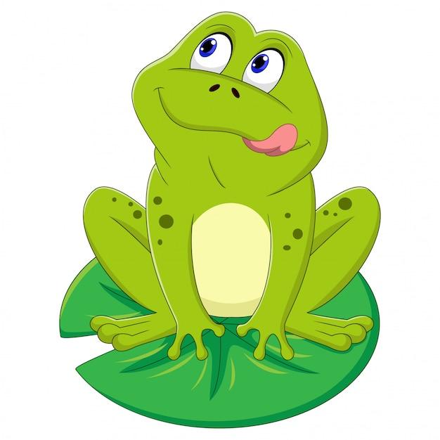Illustrazione della rana verde che si siede su una foglia Vettore Premium