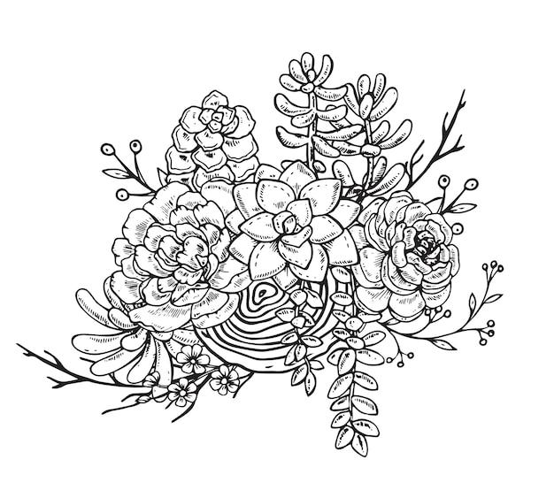 Illustrazione della composizione disegnata a mano di piante succulente. grafica in bianco e nero per la stampa, libro da colorare. su sfondo bianco. Vettore Premium