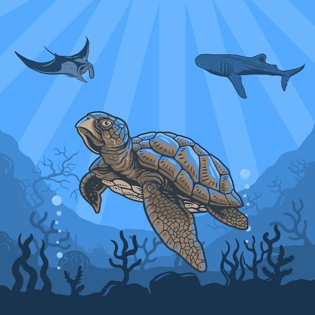 Illustrazioni sott'acqua di tartarughe, balene, pastinache, barriere coralline e acqua Vettore Premium
