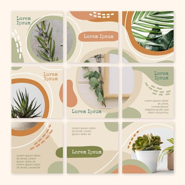 Al chiuso piante instagram feed puzzle Vettore Premium