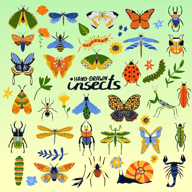 Raccolta degli insetti del manifesto del fumetto degli scarabei, dell'ape, della coccinella, della farfalla e degli insetti per l'illustrazione di insettologia. Vettore Premium