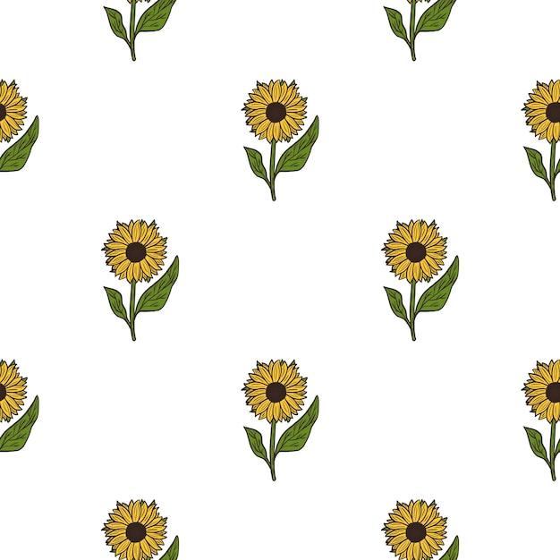 Modello botanico senza cuciture isolato con girasole giallo semplice Vettore Premium