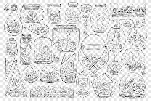 Vasi per l'illustrazione stabilita di doodle di cactus in crescita Vettore Premium