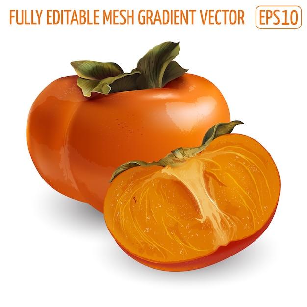 Succosa frutta cachi su uno sfondo bianco. illustrazione realistica. Vettore Premium