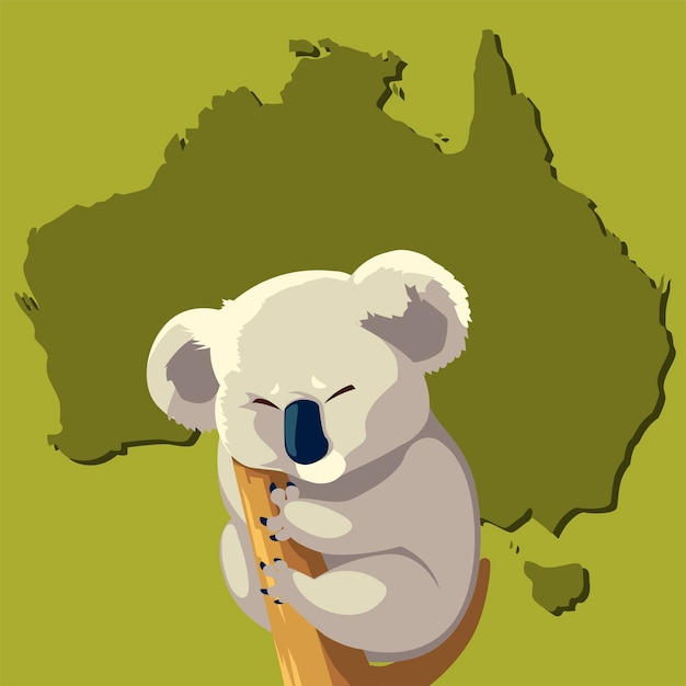 Koala sul ramo di albero animale australiano mappa della fauna selvatica Vettore Premium