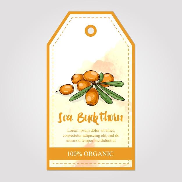 Etichetta di marmellata di olivello spinoso con sfondo acquerello Vettore Premium