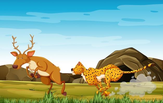 Leopardo caccia al cervo nel personaggio dei cartoni animati sullo sfondo della foresta Vettore Premium