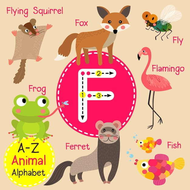 Alfabeto dello zoo di lettera f Vettore Premium