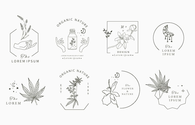 Collezione di oggetti linea con mano, cannabis, lavanda, magnolia, luna Vettore Premium