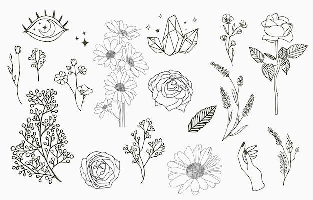 Collezione di oggetti linea con mano, magnolia, rosa, lavanda, gelsomino, foglia, fiore, girasole Vettore Premium