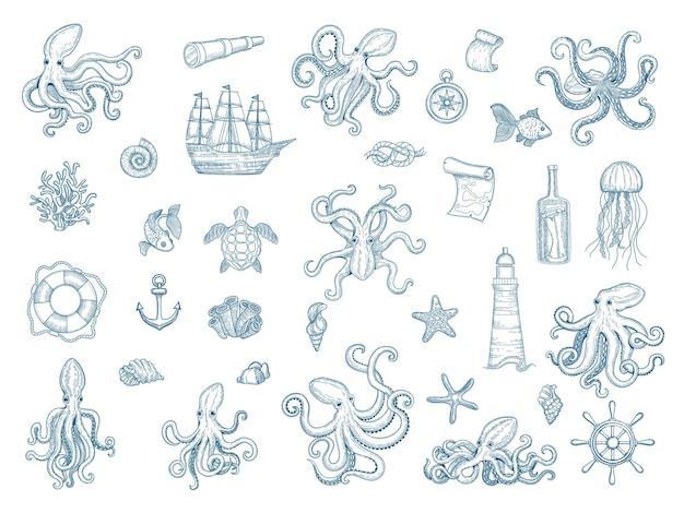 Illustrazioni marine. polpo set nautico conchiglie di calamari selvatici collezione disegnata a mano mostro kraken. Vettore Premium