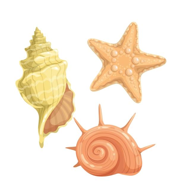 Icona di conchiglie marine Vettore Premium