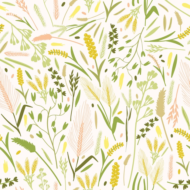 Modello naturale con splendidi fiori che sbocciano e orecchie o punte di piante di cereali Vettore Premium