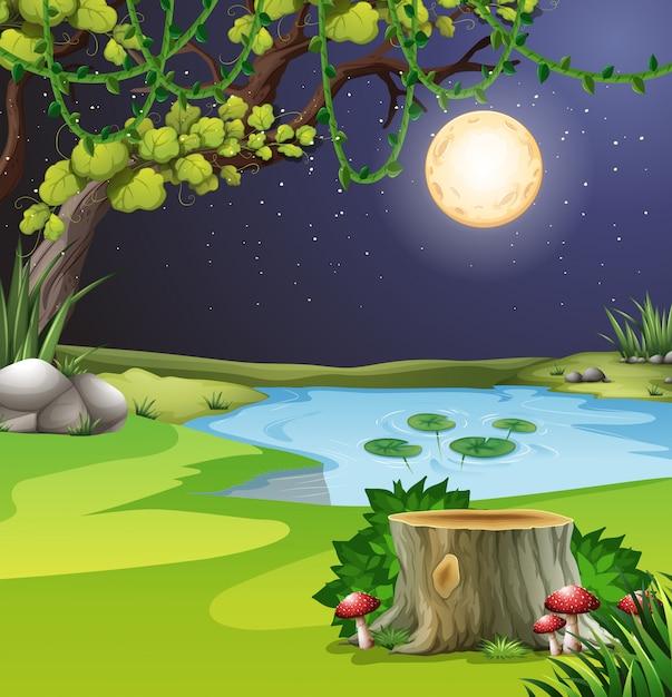Un paesaggio forestale notturno Vettore Premium