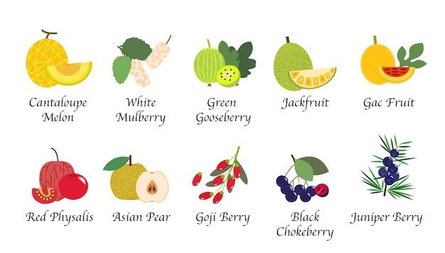 Raccolta isolata frutta organica della natura salute Vettore Premium