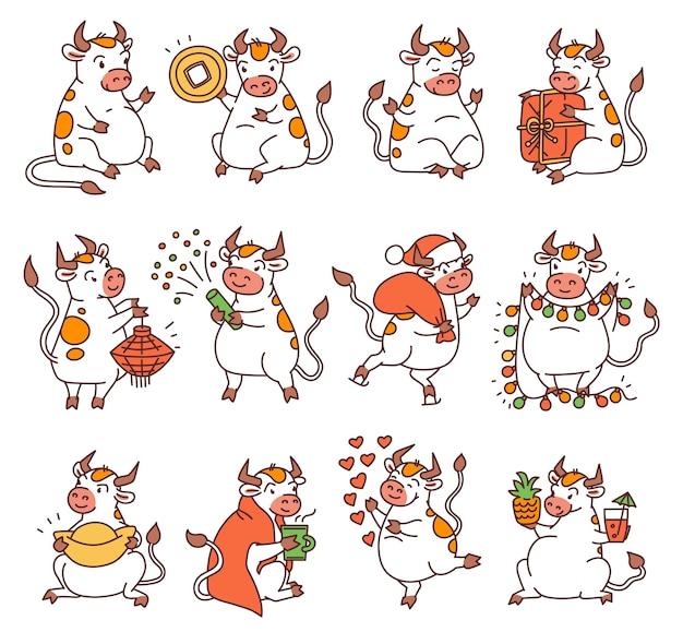Bue impostato con i simboli del nuovo anno cinese. simpatici tori diversi tengono soldi e lanterne cinesi e lancia fuochi d'artificio. illustrazioni del fumetto del profilo di vettore. Vettore Premium