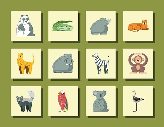 Panda coccodrillo rinoceronte ippopotamo scimmia koala e uccelli della giungla animali icone del fumetto illustrazione Vettore Premium
