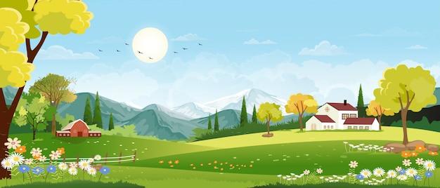 Panorama del villaggio di primavera con prato verde sulle colline e paesaggio di cielo blu, campagna panoramica del campo verde con fiori di fattoria, fienile ed erba Vettore Premium