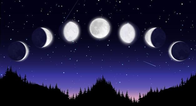 Scenario notturno panoramico con foresta Vettore Premium