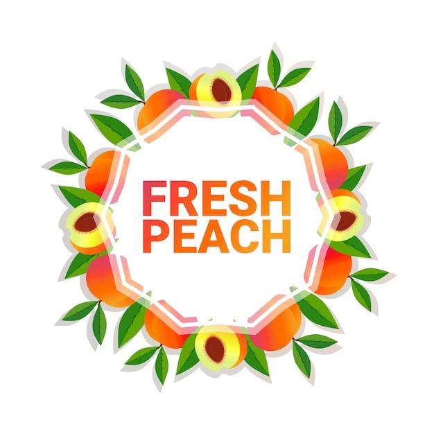Spazio colorato della copia del cerchio della frutta della pesca organico sopra il fondo bianco del modello, lo stile di vita sano o il concetto di dieta Vettore Premium