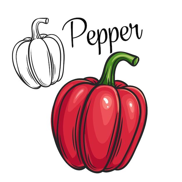 Negozio o mercato dell'icona del disegno del pepe Vettore Premium