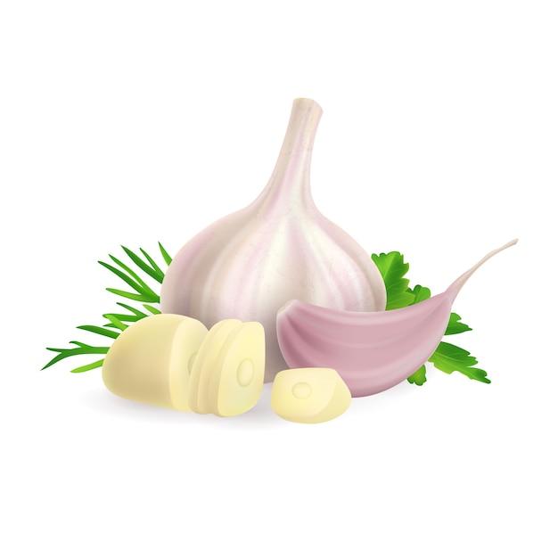 Foto realistica illustrazione della testa e dello spicchio d'aglio tritato. su sfondo bianco clipart della pianta delle spezie ed erbe verdi aneto, prezzemolo Vettore Premium