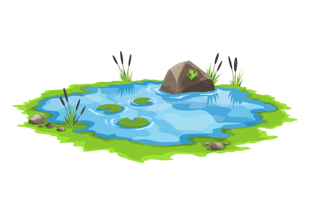 Stagno pittoresco con canne e pietre intorno. il concetto di un piccolo lago paludoso aperto in uno stile di paesaggio naturale. grafica per la stagione primaverile Vettore Premium