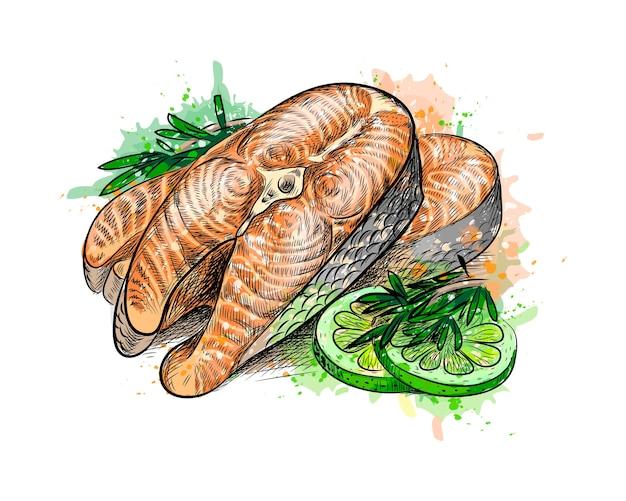 Pezzi di pesce rosso e lime da una spruzzata di acquerello, schizzo disegnato a mano. illustrazione di vernici Vettore Premium
