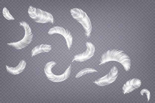 Illustrazione realistica delle piume Vettore Premium