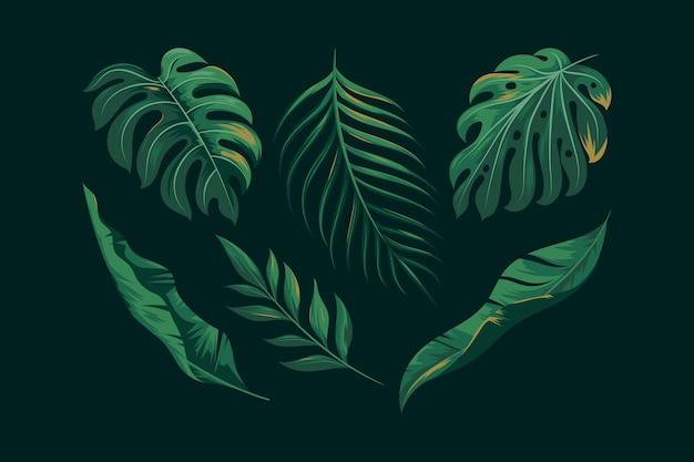 Collezione realistica di foglie esotiche verdi Vettore Premium
