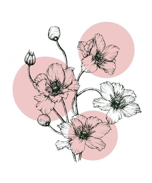 Erbe disegnate a mano realistiche e fiori selvatici Vettore Premium