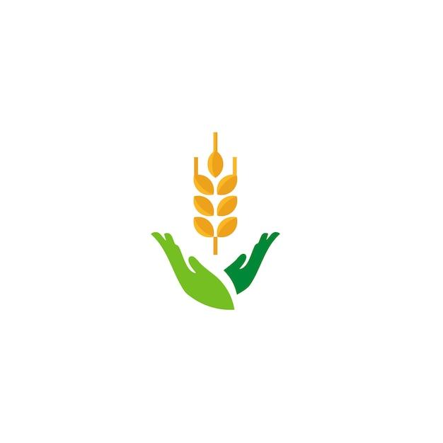 Logo del riso Vettore Premium