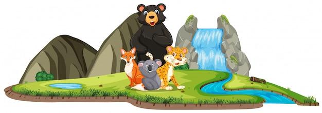 Scena con molti animali selvatici dalla cascata su bianco Vettore Premium