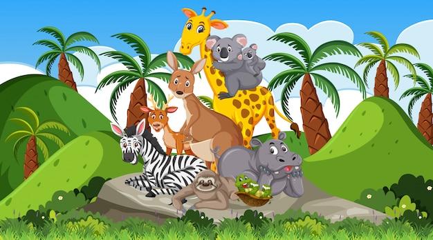 Scena con molti animali selvatici nella foresta Vettore Premium